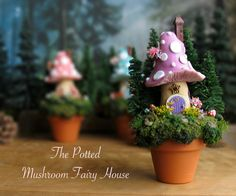 Potted Mushroom Fairy House - Miniature Spotted Coral Pink Woodland House with Pine Trees, Wildflowers, Garden Bench and Window Boxes
