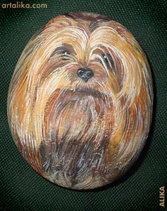 Hand painted rocks: dogs:Yorkshire terrier