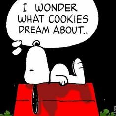 I wonder what cookies dream about...