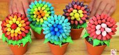 Jelly Bean Flower Pot Cupcakes
