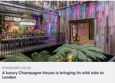 A luxury Champagne House is bringing its wild side to London Perrier Jouet, Champagne, Bring It On, London, Luxury, News, House, Art, Art Background
