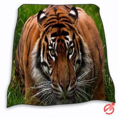 New Tiger face aggression animal Blanket