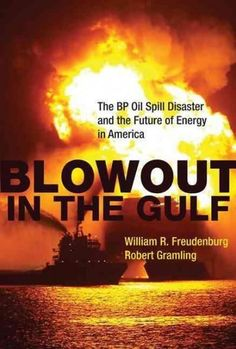 Blowout in the Gulf: The BP Oil Spill Disaster and the Future of Energy in America: Blowout in the Gulf