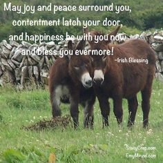 May joy and peace surround you, contentment latch your door, and happiness be with you now and bless you evermore! Irish Blessing, Contentment, Inspire Others, Blessed, Sisters, Spirituality, Happiness, Joy, Peace