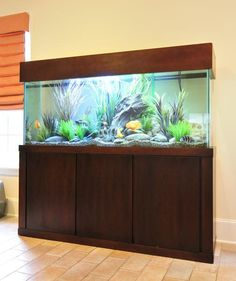 Custom Aquarium Stands And Canopies In Your Choice Of Style And Stain Color
