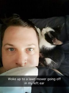 Humor Train - Funny Pictures - Tap the link now to see all of our cool cat colle. - Humor Train – Funny Pictures – Tap the link now to see all of our cool cat collections! Funny Animal Memes, Cute Funny Animals, Funny Animal Pictures, Cat Memes, Funny Cute, Cute Cats, I Love Cats, Funny Humor, Funny Kitties