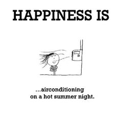 Happiness #102: Happiness is air conditioning on a hot summer night.