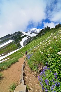 Hiking the Golden Gate Trail, Mount Rainier National Park, Washington