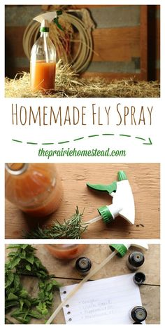 Homemade fly spray for your animals with simple ingredients and no toxic chemicals!