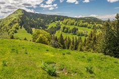 Randonnée dans les Hautes-Combes et vue sur le Crêt de Chalam | by Les carnets de voyage de Charlotte et Nicolas | Jura, France | #JuraTourisme