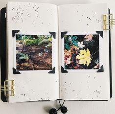Ashley G midori traveler's notebook page