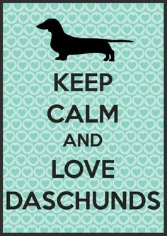 Love Dachshunds! I may have to frame this in my house!