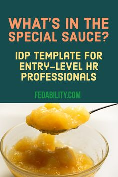 IDP for HR professional wanting to move up from an entry level position for their career development.