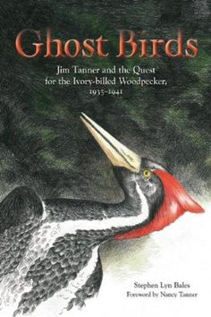 ghost birds jim tanner and the quest for the ivory billed woodpecker 1935