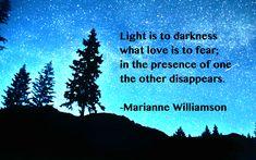Williamson quote: Light is…