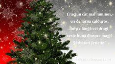 Christmas Tree, Holiday Decor, Xmas Tree, Xmas Trees, Christmas Trees