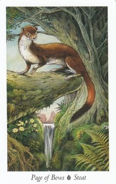 Page of Bows - Wildwood Tarot. I'm using this deck now and it is beautiful and powerful.