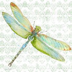 Dragonfly Bliss-jp3436 Print By Jean Plout