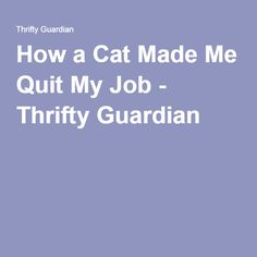 How a Cat Made Me Quit My Job - Thrifty Guardian
