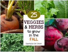 Cool-Loving Vegetables Did you know there are over 20 vegetables that actually grow better in the cool weather? And there are several herbs you can grow into winter? Depending on where you live, mid or...