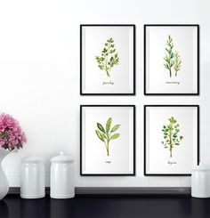 Herb print Set of 4, 8x10 Watercolor painting, Kitchen art, Garden print, Botanical print, kitchen print set, Culinary print, Green artwork