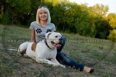#American #Bulldog #photography #dog #girls   http://www.all-about-american-bulldog-dog-breed.com