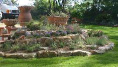 Come creare un giardino roccioso - Giardino roccioso con fiori colorati