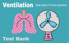 Ventilation Study Guide (Test Bank) | Respiratory Therapy Zone