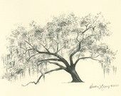 Savannah Live Oak Tree Pen and Ink Drawing Print - Hunter Army Airfield.