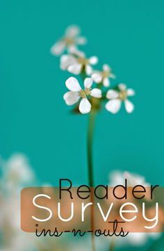 A reader survey is good for your blog soul