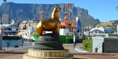 Information About Green Point and Waterfront - Local Business Directory Apartheid Museum, Cheap Cruises, African Safari, Africa Travel, Capital City, World Heritage Sites, Cape Town, Day Trip, Luxury Travel