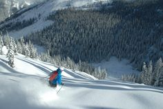 Did you ever just have that perfect run? Winter can't come soon enough! #powderskiing #toomuchfun