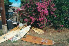 Like Queen Bey says, Surfboard Surfboard XO AZUREÉ