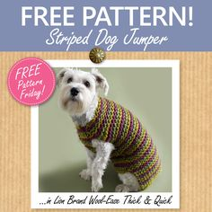This thoroughly dapper striped dog jumper by Lion Brand knits up in no time! Download the pattern for free from our website as part of our Free Pattern Friday series! #freepattern #knitting #WoolWarehouse #LionBrand