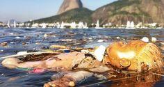 Governo do Rio lança novo acordo para planejar despoluição da Baía de Guanabara | Rio de Janeiro