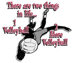 all about volleyball