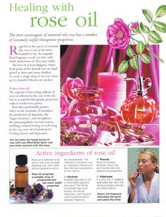 Mind, Body, Spirit Collection - Healing With Rose Oil Healing Oils, Aromatherapy Oils, Healing Herbs, Natural Healing, Rose Essential Oil, Doterra Essential Oils, Young Living Essential Oils, Best Oils, Wellness