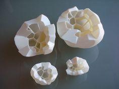 University of Pennsylvania Biomimetic Collaboration: Sabin and Jones : Biomimetic Architecture