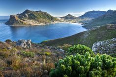 Chapmans Peak im Hintergrund Hout Bay South Afrika, Port Elizabeth, Cape Town, Nice View, Scenery, Places To Visit, Africa, Landscape, Travel