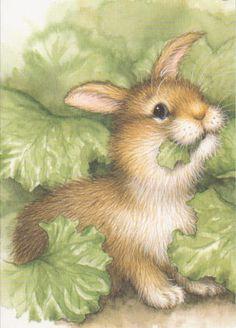 happy bunny ~ rabbit .. X ღɱɧღ ||