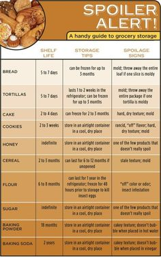 Food Storage Guide Infographic Kitchen Cooking Tips GuideKnow Your Food's Limits is listed (or ranked) 2 on the list 34 Genius Grocery Shopping HacksGood to know - Food Storage Guide (although the Cooking 101, Cooking Recipes, Healthy Recipes, Cooking Hacks, Cooking Classes, Cooking Fish, Cooking Steak, Vegetarian Cooking, Beginner Cooking