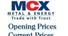 MCX Commodity Current Market Updates As on 13 Jan 2014  By www.100mcxtips.com/blog/