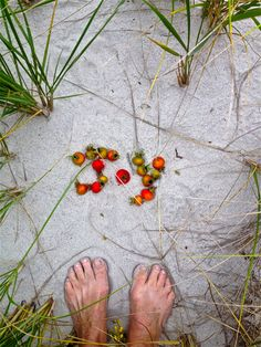 Cape Cod, rose-hip, bare-feet JOY