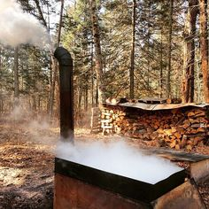 It's maple syrup harvesting season in Minnesota. Sugar maple trees are tapped and the sap is boiled down to make syrup. Photo credit: @ericvasko #OnlyinMN