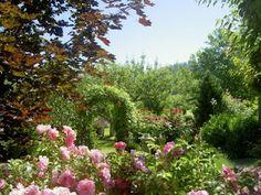Elysium gardens, Kelowna, BC.