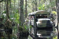 Florida   Travel   Outdoor   Tours   Unique Places   Attractions   Adventure