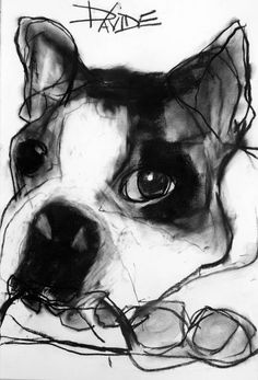 """""""Schnorf"""" Original Charcoal by Valerie Davide ~ Eyes are always expressive and the focal point of her work ~ Every drawing oozes spontaneity   Davidson Fire Art"""