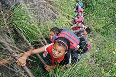 2016 children wearing their school backpacks climb on a cliff using a bamboo ladder on their way home from school in Zhaojue county, southwest China's Sichuan province. Schoolchildren must climb an bamboo ladder secured to a sheer cliff face. Character Education, Kids Education, Bamboo Ladders, Kids Climbing, Walk To School, Kids Around The World, Thing 1, Interesting News, Interesting Stories