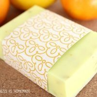 10 Minute Gift Idea: DIY Natural Citrus Antibacterial Soap