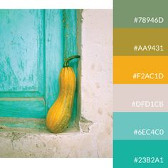 Vibrant autumn color palette | #gourd #turquoise #yellow #colorpalettes #lovecolors #colourlovers Color Schemes Colour Palettes, Fall Color Palette, Colour Pallette, Color Combinations, Vibrant Colors, Colours, Coloring Apps, Flower Phone Wallpaper, Yellow Turquoise